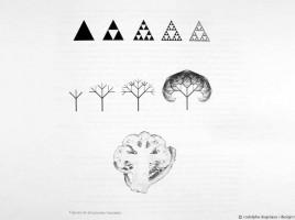 ballon-fractal-rodolphe-dogniaux-design-matin-00